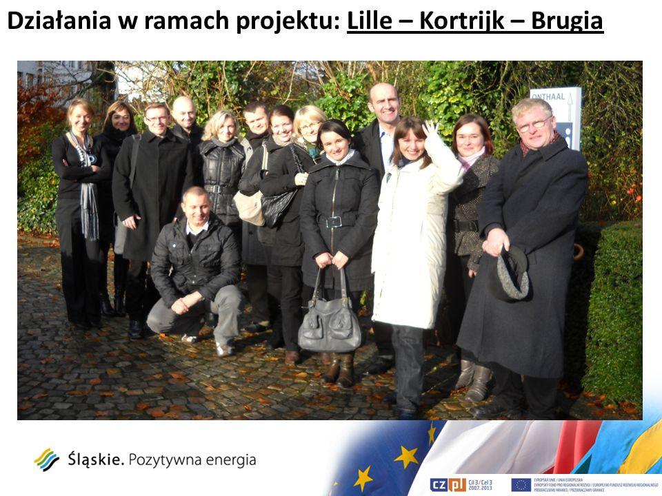 Działania w ramach projektu: Lille – Kortrijk – Brugia