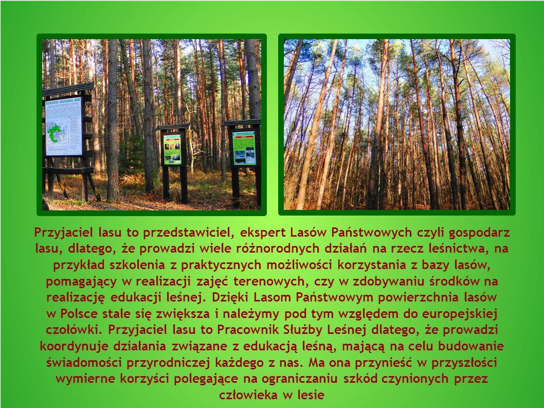 Przyjaciel lasu to przedstawiciel, ekspert Lasów Państwowych czyli gospodarz lasu, dlatego, że prowadzi wiele różnorodnych działań na rzecz leśnictwa,