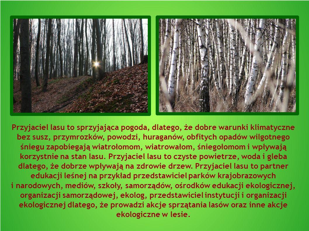 Przyjaciel lasu to sprzyjająca pogoda, dlatego, że dobre warunki klimatyczne bez susz, przymrozków, powodzi, huraganów, obfitych opadów wilgotnego śni
