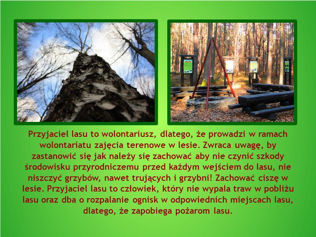 Przyjaciel lasu to wolontariusz, dlatego, że prowadzi w ramach wolontariatu zajęcia terenowe w lesie. Zwraca uwagę, by zastanowić się jak należy się z