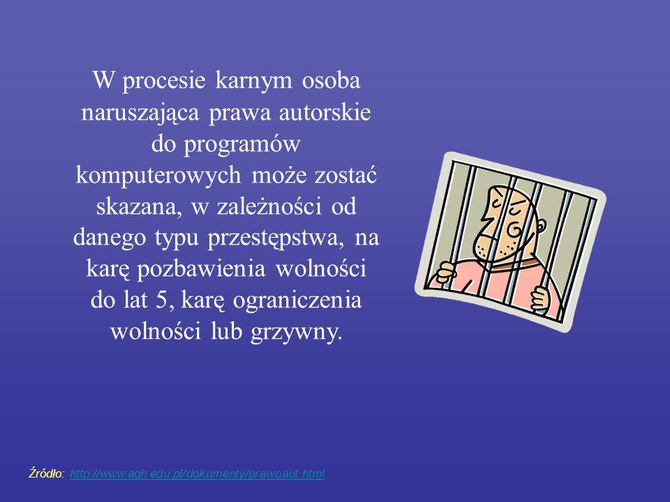 W procesie karnym osoba naruszająca prawa autorskie do programów komputerowych może zostać skazana, w zależności od danego typu przestępstwa, na karę