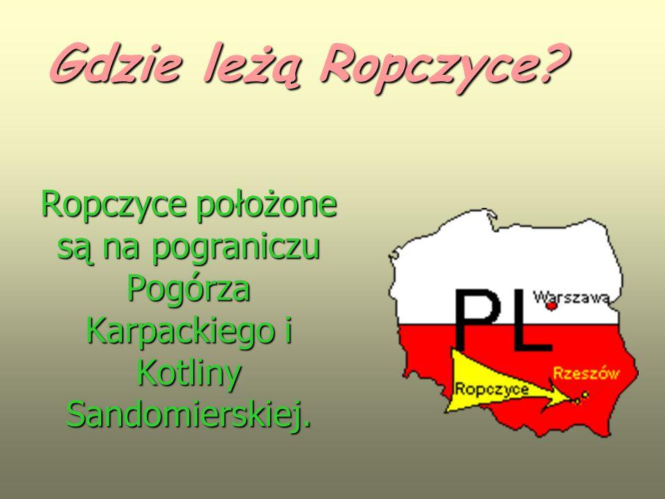 Ropczyce położone są na pograniczu Pogórza Karpackiego i Kotliny Sandomierskiej. Gdzie leżą Ropczyce?