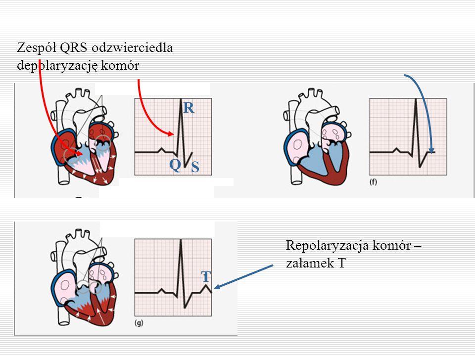 Zespół QRS odzwierciedla depolaryzację komór R S Q T Repolaryzacja komór – załamek T