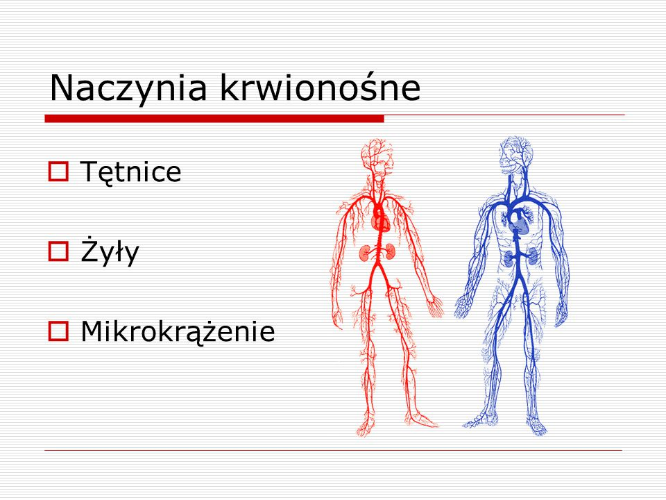 Naczynia krwionośne  Tętnice  Żyły  Mikrokrążenie