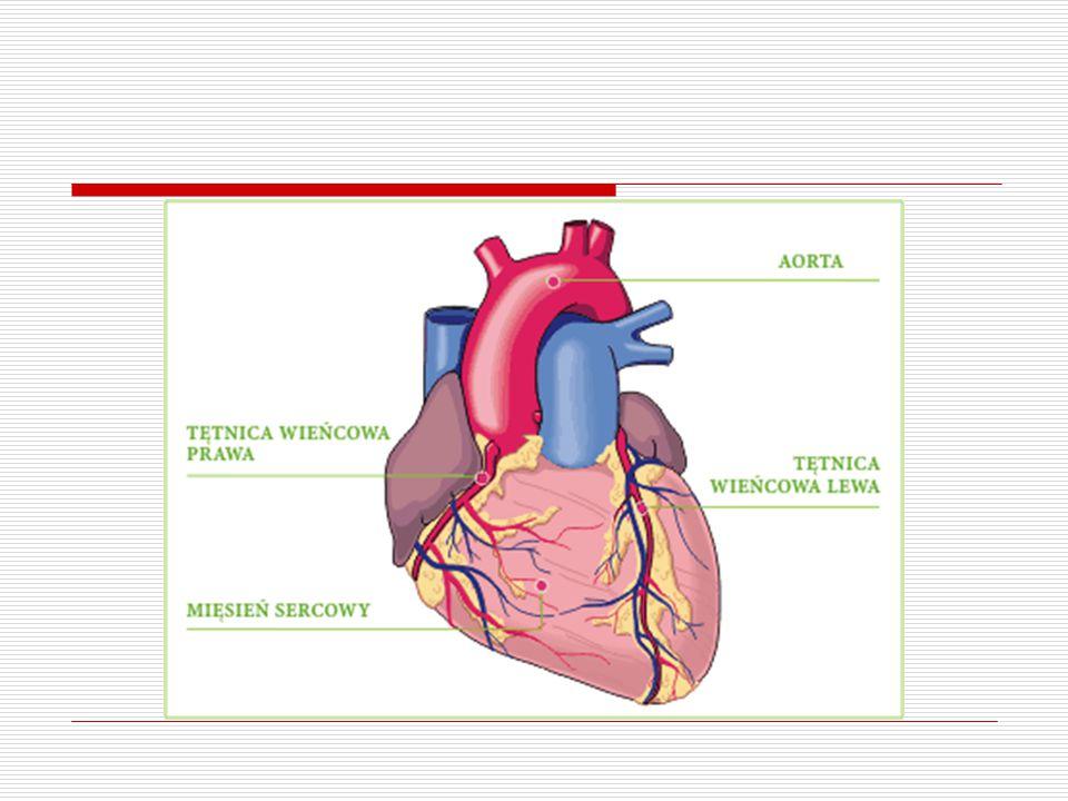 Układ naczyniowy  Podział naczyń krwionośnych ze względu na funkcję: Naczynia transportujące Naczynia oporowe Naczynia wymiany odżywczej Naczynia pojemnościowe