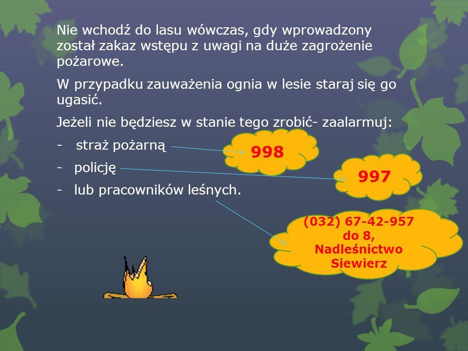 Nie wchodź do lasu wówczas, gdy wprowadzony został zakaz wstępu z uwagi na duże zagrożenie pożarowe.