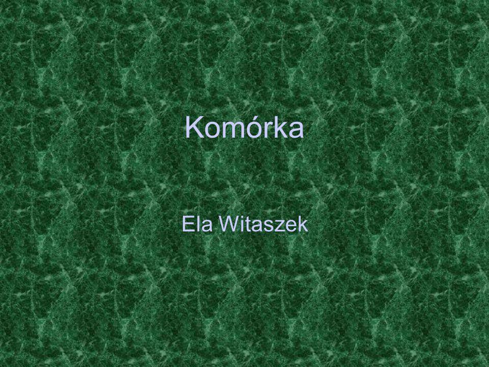 Komórka Ela Witaszek