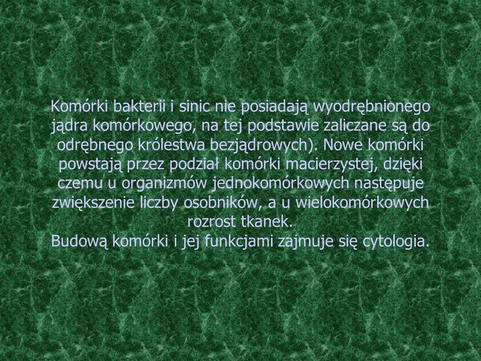 Komórki bakterii i sinic nie posiadają wyodrębnionego jądra komórkowego, na tej podstawie zaliczane są do odrębnego królestwa bezjądrowych). Nowe komó