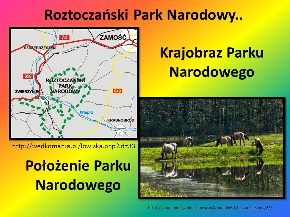 Ojcowski Park Narodowy..  Leży w południowej części Wyżyny Krakowsko- Częstochowskiej,  jest to najmniejszy Park Narodowy w Polsce,  stworzono go w