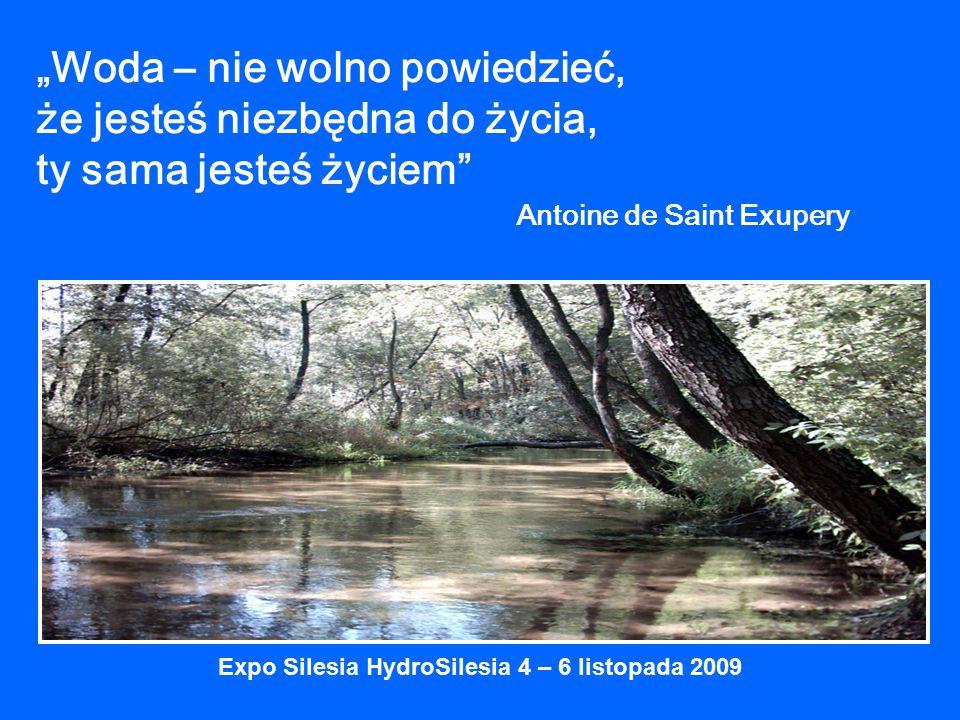 """""""Woda – nie wolno powiedzieć, że jesteś niezbędna do życia, ty sama jesteś życiem Antoine de Saint Exupery Expo Silesia HydroSilesia 4 – 6 listopada 2009"""