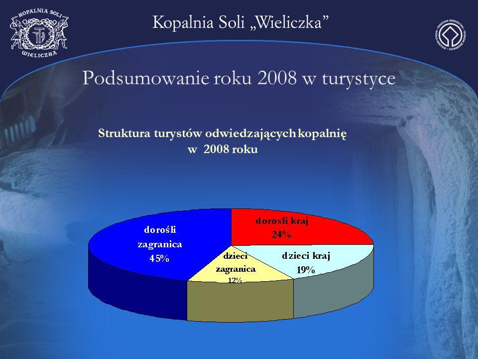 Podsumowanie roku 2008 w turystyce Struktura turystów odwiedzających kopalnię w 2008 roku