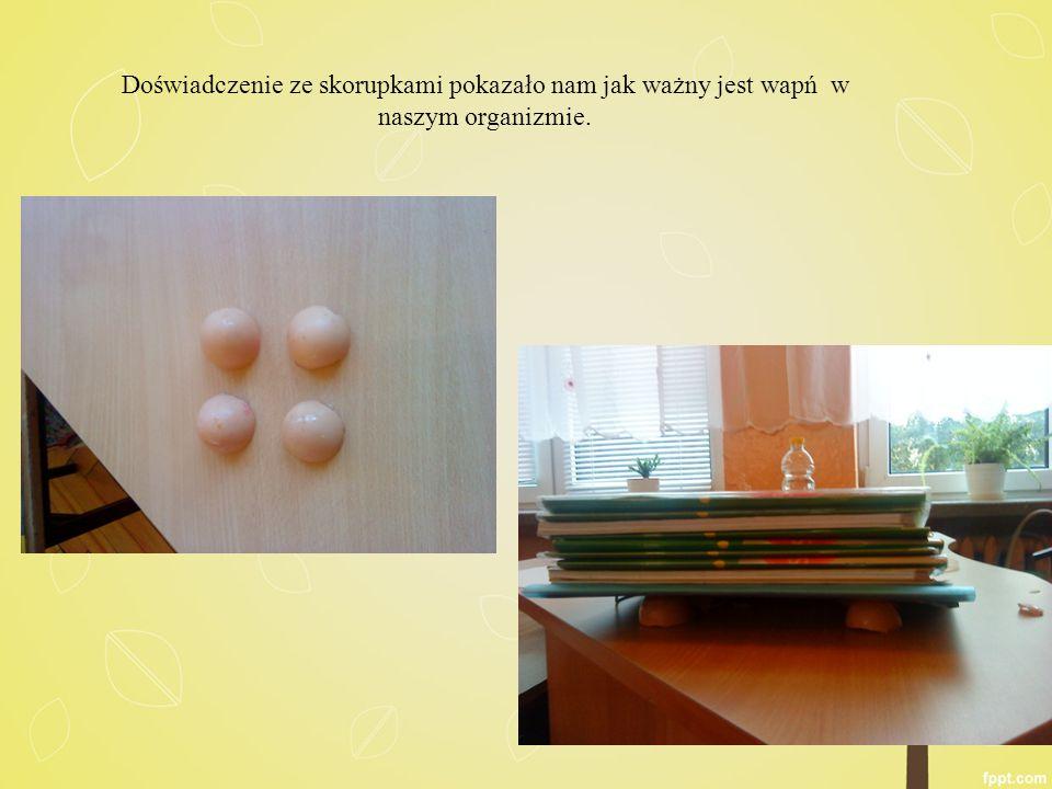 Doświadczenie ze skorupkami pokazało nam jak ważny jest wapń w naszym organizmie.