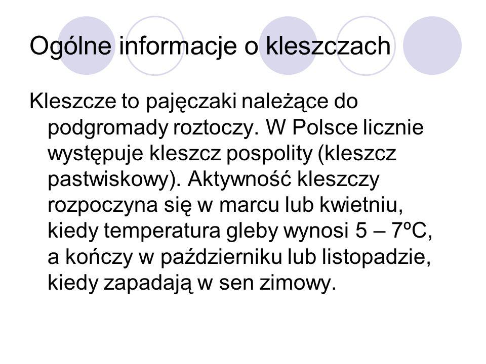 Koniec Wykonała Agnieszka Gola kl. 2F