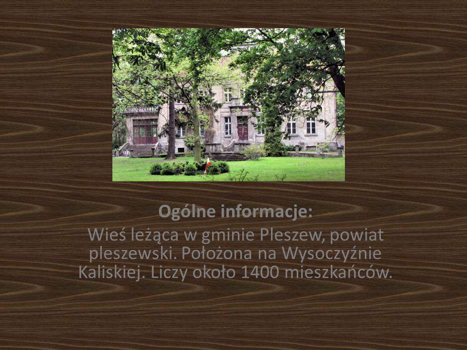 Ogólne informacje: Wieś leżąca w gminie Pleszew, powiat pleszewski. Położona na Wysoczyźnie Kaliskiej. Liczy około 1400 mieszkańców.