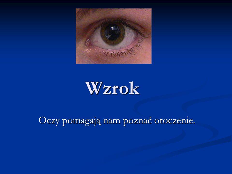 Budowa oka: 1.twardówka 2.ciało rzęskowe 3.tęczówka 4.ciecz wodnista 5.oś optyczna 6.oś widzenia 7.rogówka 8.soczewka 9.naczyniówka 10.nerw wzrokowy 11.plamka ślepa 12.dołek środkowy (plamka żółta) 13.