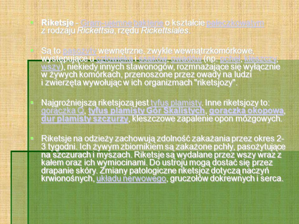  Riketsje - Gram-ujemne bakterie o kształcie pałeczkowatym z rodzaju Rickettsia, rzędu Rickettsiales. Gram-ujemnebakteriepałeczkowatymGram-ujemnebakt