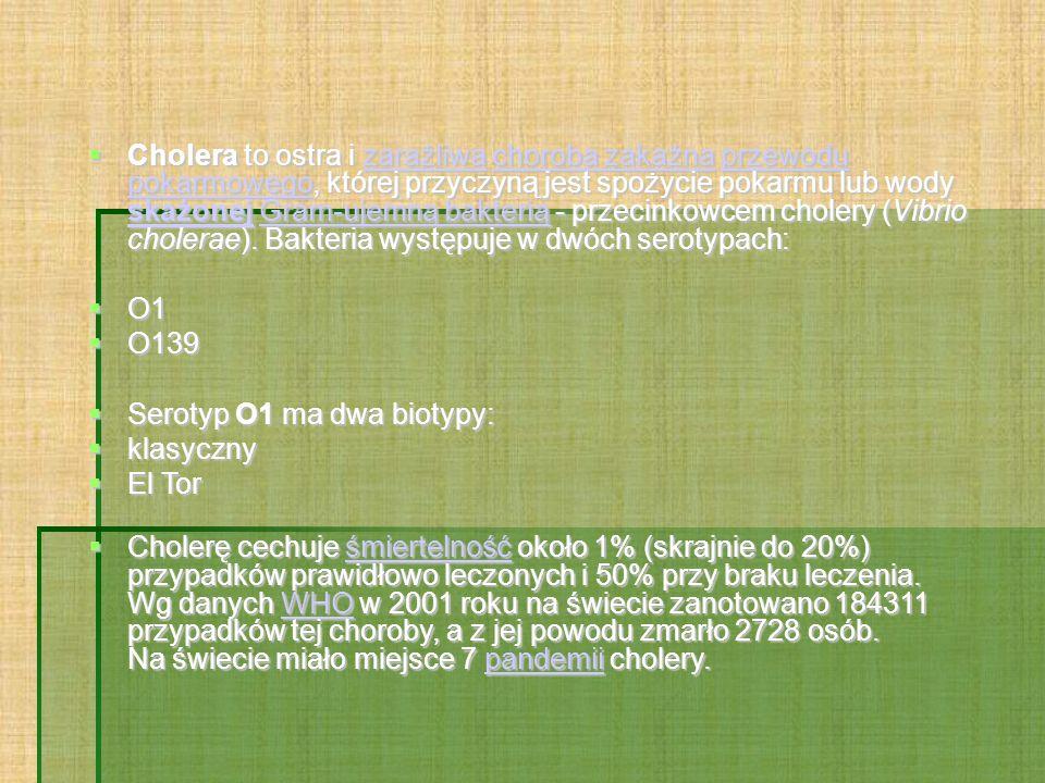  Cholera to ostra i zaraźliwa choroba zakaźna przewodu pokarmowego, której przyczyną jest spożycie pokarmu lub wody skażonej Gram-ujemną bakterią - p