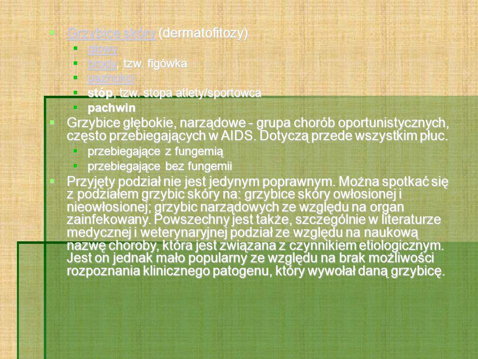  Grzybice skóry (dermatofitozy) Grzybice skóry Grzybice skóry  głowy głowy  brody, tzw.