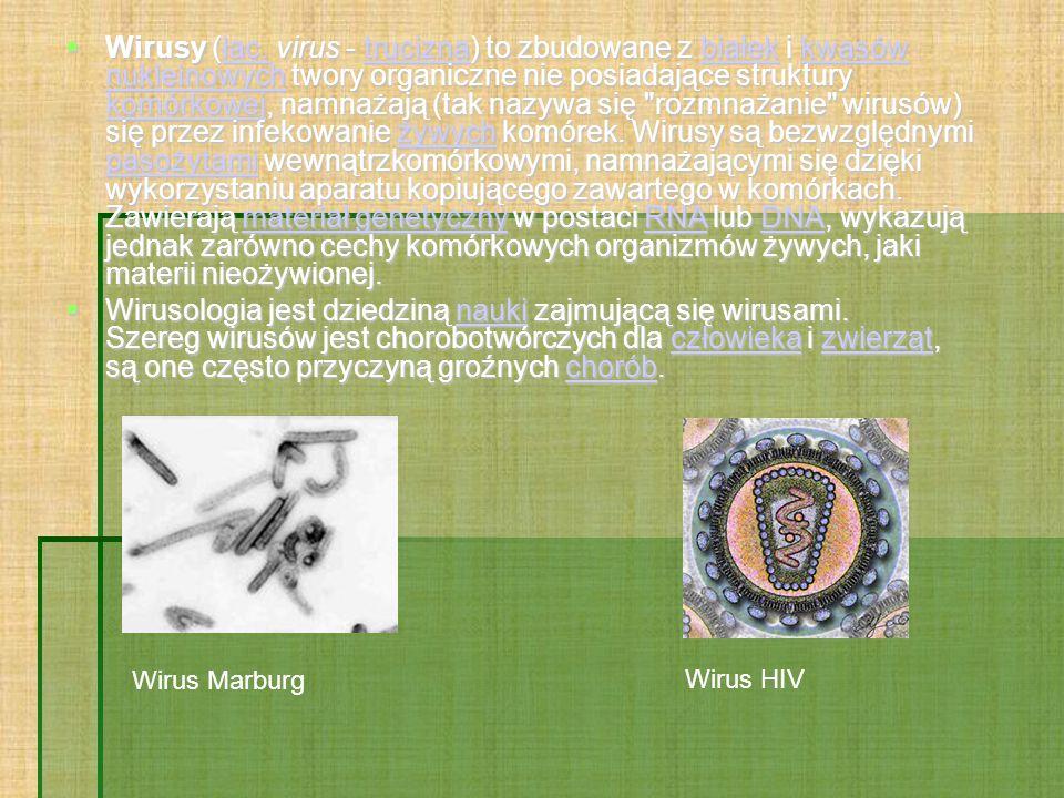  Wirusy (łac.