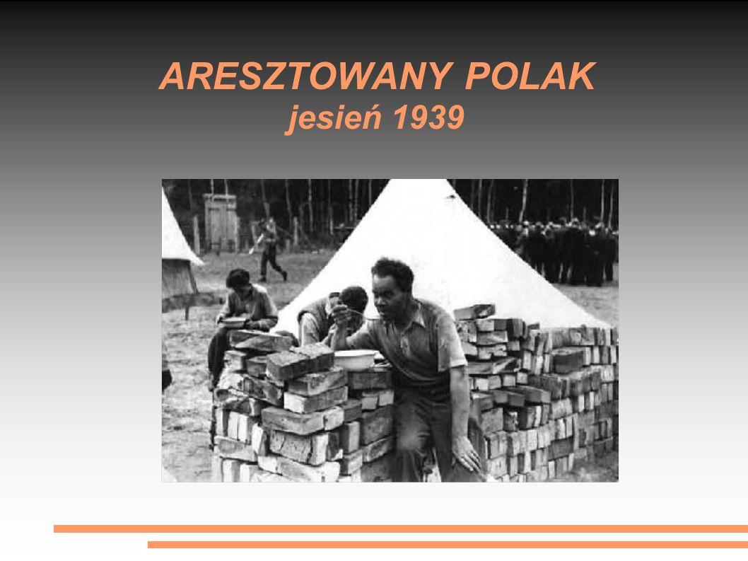 ARESZTOWANY POLAK jesień 1939