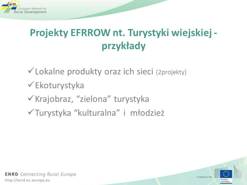 Click to edit Master title style Click to edit Master text styles – Second level Third level – Fourth level » Fifth level Projekty EFRROW nt. Turystyk