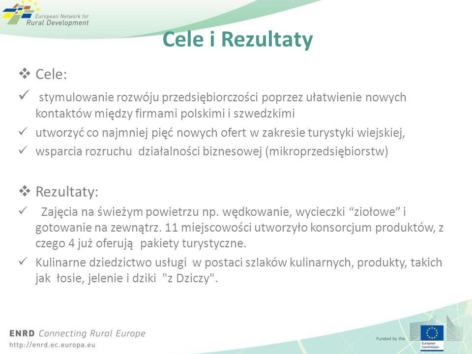 Click to edit Master title style Click to edit Master text styles – Second level Third level – Fourth level » Fifth level Cele i Rezultaty  Cele: sty