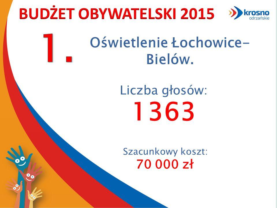 Oświetlenie Łochowice- Bielów. Szacunkowy koszt: 70 000 zł Liczba głosów: 1363