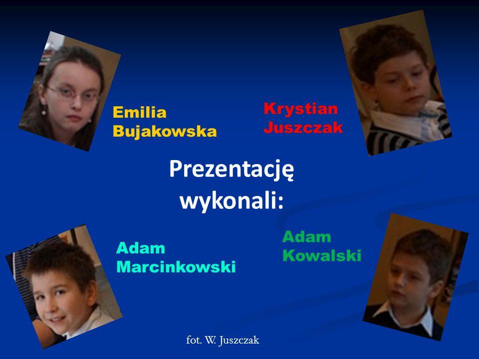 Prezentację wykonali: Emilia Bujakowska Krystian Juszczak Adam Kowalski Adam Marcinkowski fot.