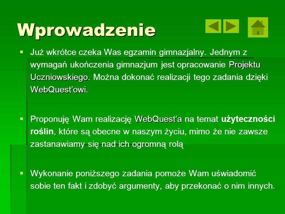 Wprowadzenie  Projektu Uczniowskiego. WebQuest'owi.