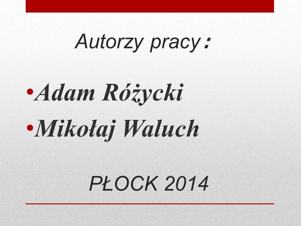 Autorzy pracy : Adam Różycki Mikołaj Waluch PŁOCK 2014