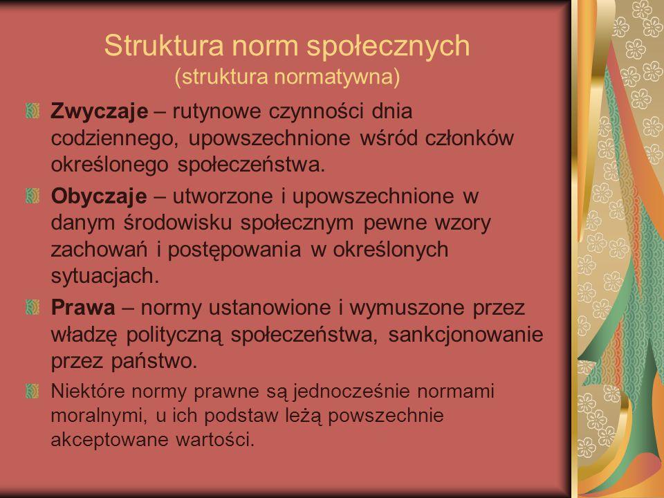 Struktura norm społecznych (struktura normatywna) Zwyczaje – rutynowe czynności dnia codziennego, upowszechnione wśród członków określonego społeczeństwa.