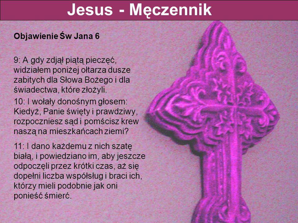 Objawienie Św Jana 6 9: A gdy zdjął piątą pieczęć, widziałem poniżej ołtarza dusze zabitych dla Słowa Bożego i dla świadectwa, które złożyli. 10: I wo