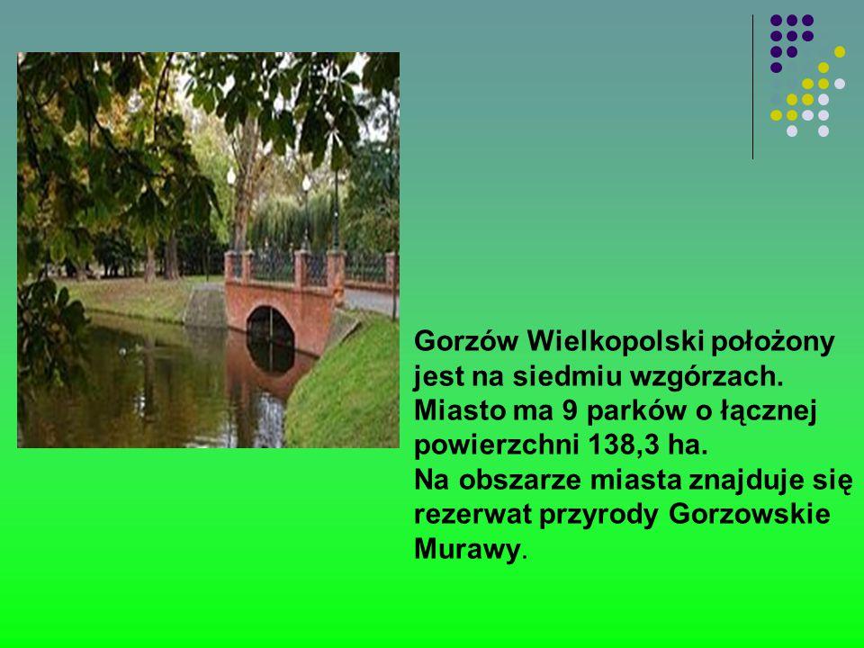 Gorzów Wielkopolski położony jest na siedmiu wzgórzach. Miasto ma 9 parków o łącznej powierzchni 138,3 ha. Na obszarze miasta znajduje się rezerwat pr