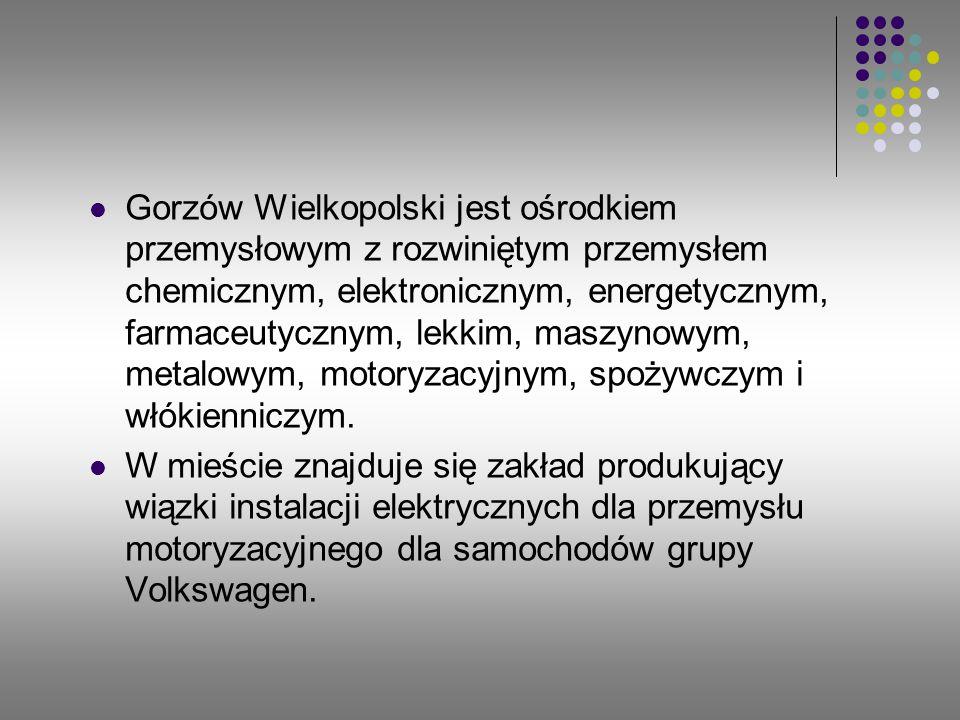 Gorzów Wielkopolski jest ośrodkiem przemysłowym z rozwiniętym przemysłem chemicznym, elektronicznym, energetycznym, farmaceutycznym, lekkim, maszynowy