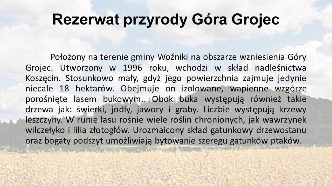 Rezerwat przyrody Góra Grojec Położony na terenie gminy Woźniki na obszarze wzniesienia Góry Grojec. Utworzony w 1996 roku, wchodzi w skład nadleśnict