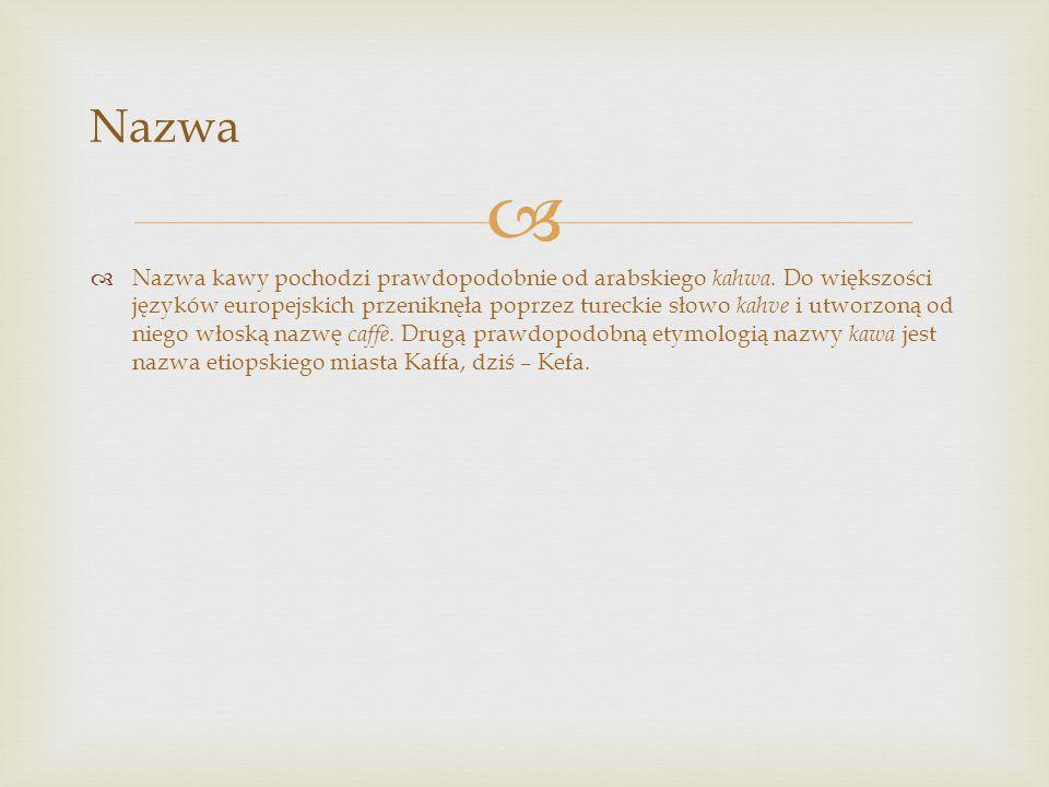 Nazwa  Nazwa kawy pochodzi prawdopodobnie od arabskiego kahwa. Do większości języków europejskich przeniknęła poprzez tureckie słowo kahve i utworz