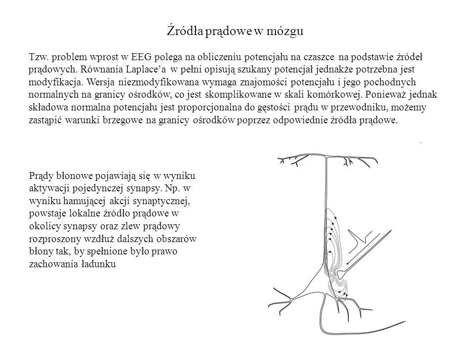 Źródła prądowe w mózgu Tzw. problem wprost w EEG polega na obliczeniu potencjału na czaszce na podstawie źródeł prądowych. Równania Laplace'a w pełni
