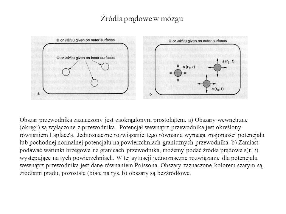 Źródła prądowe w mózgu Obszar przewodnika zaznaczony jest zaokrąglonym prostokątem. a) Obszary wewnętrzne (okręgi) są wyłączone z przewodnika. Potencj