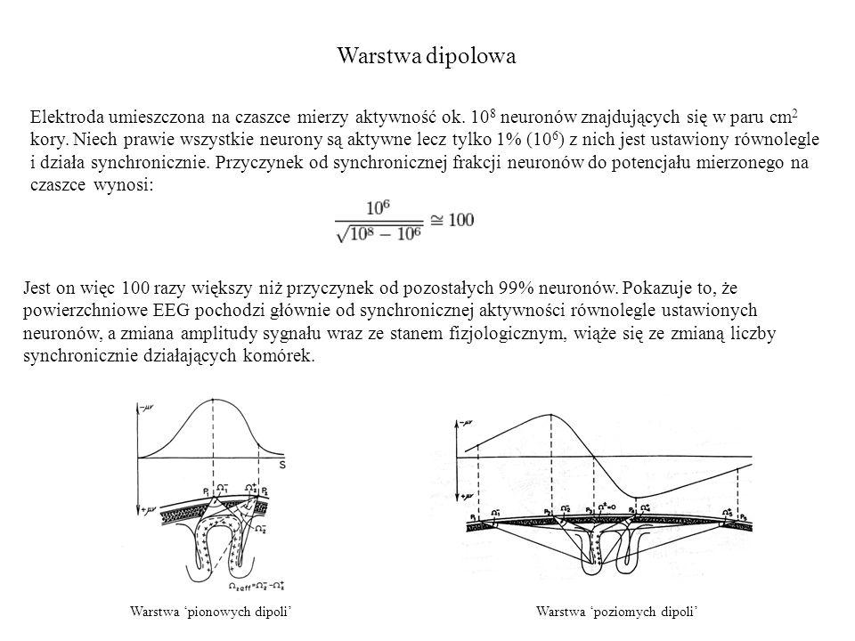 Warstwa dipolowa Elektroda umieszczona na czaszce mierzy aktywność ok. 10 8 neuronów znajdujących się w paru cm 2 kory. Niech prawie wszystkie neurony