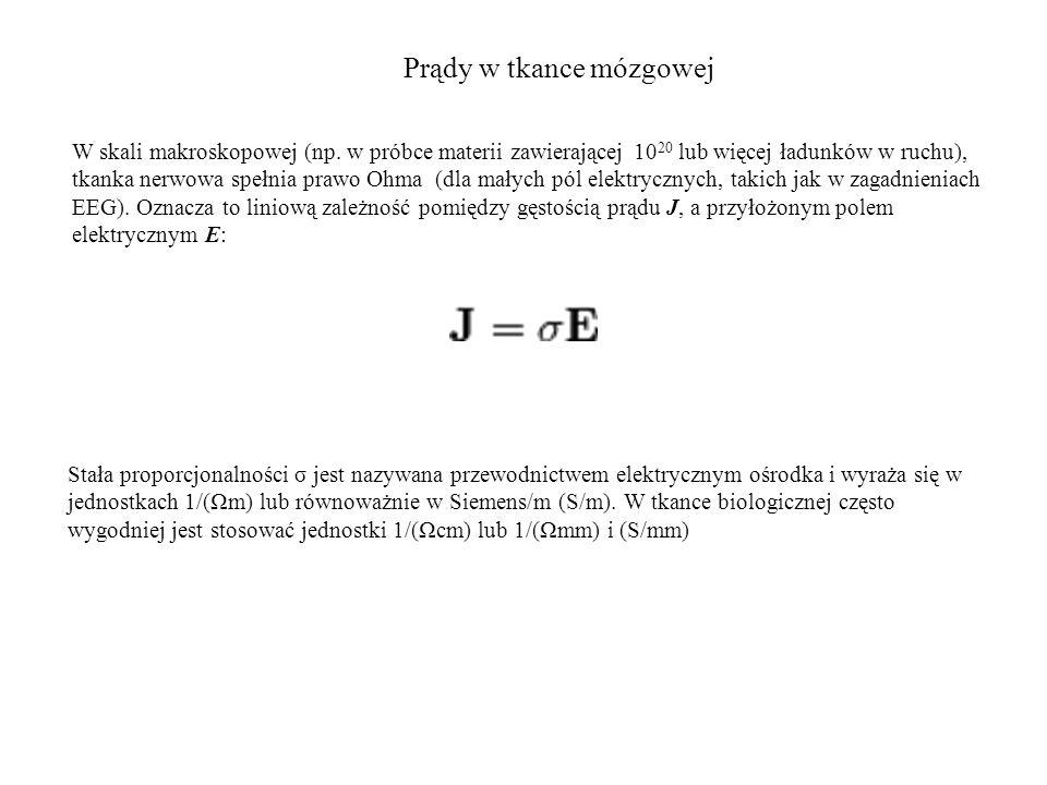 Dipol prądowy Znaczenie dipola w elektrofizjologii jest większe niż jakakolwiek inna konfiguracja źródeł.