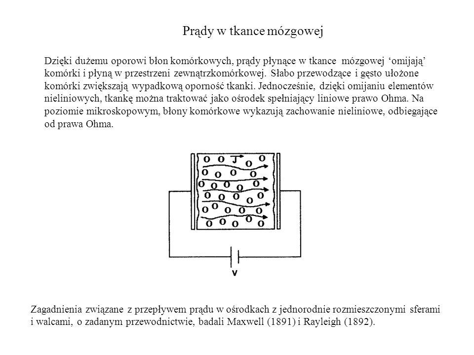Prądy w tkance mózgowej Zagadnienia związane z przepływem prądu w ośrodkach z jednorodnie rozmieszczonymi sferami i walcami, o zadanym przewodnictwie, badali Maxwell (1891) i Rayleigh (1892).