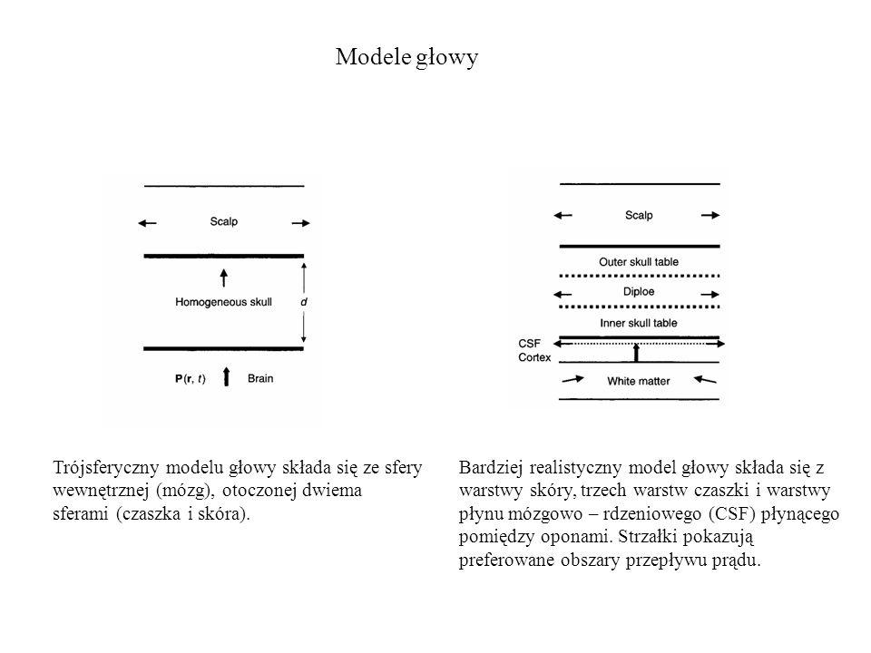 Warstwa dipolowa Elektroda umieszczona na czaszce mierzy aktywność ok.