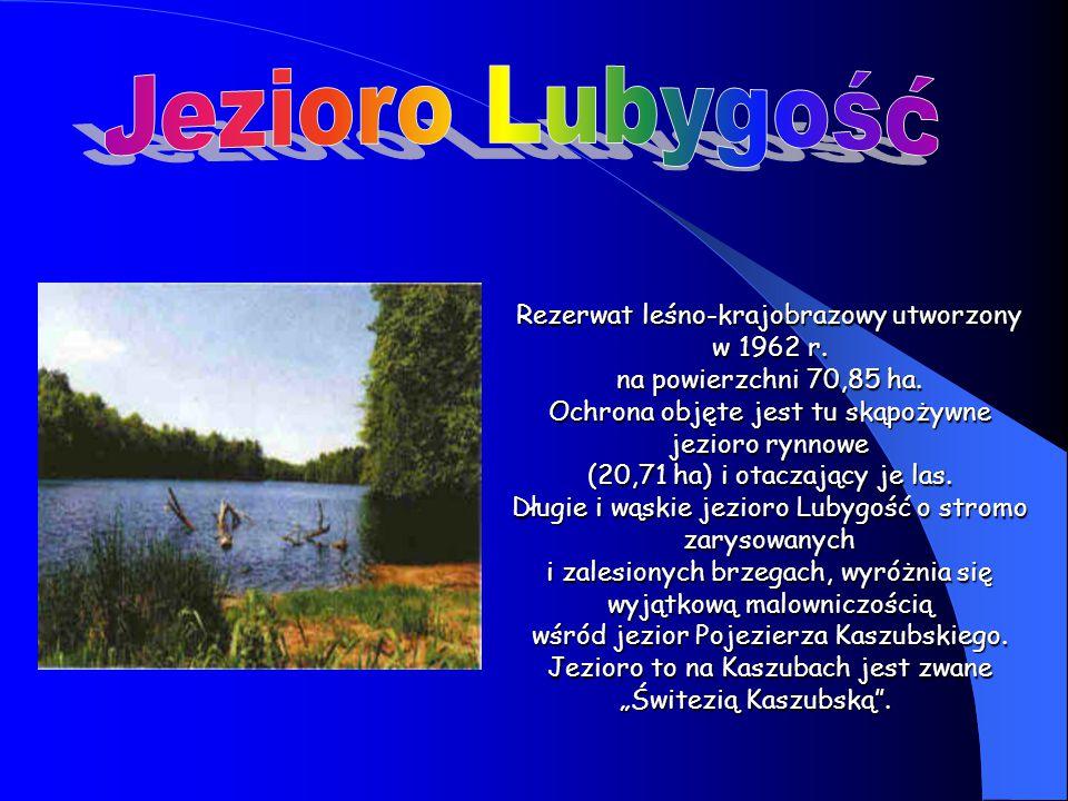 Rezerwat leśno-krajobrazowy utworzony w 1962 r. na powierzchni 70,85 ha. Ochrona objęte jest tu skąpożywne jezioro rynnowe (20,71 ha) i otaczający je