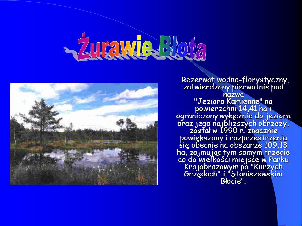 Rezerwat wodno-florystyczny, zatwierdzony pierwotnie pod nazwa Jezioro Kamienne na powierzchni 14,41 ha i ograniczony wyłącznie do jeziora oraz jego najbliższych obrzeży, został w 1990 r.