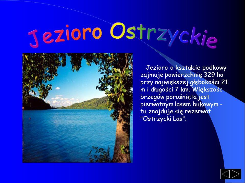 Jezioro o kształcie podkowy zajmuje powierzchnię 329 ha przy największej głębokości 21 m i długości 7 km.