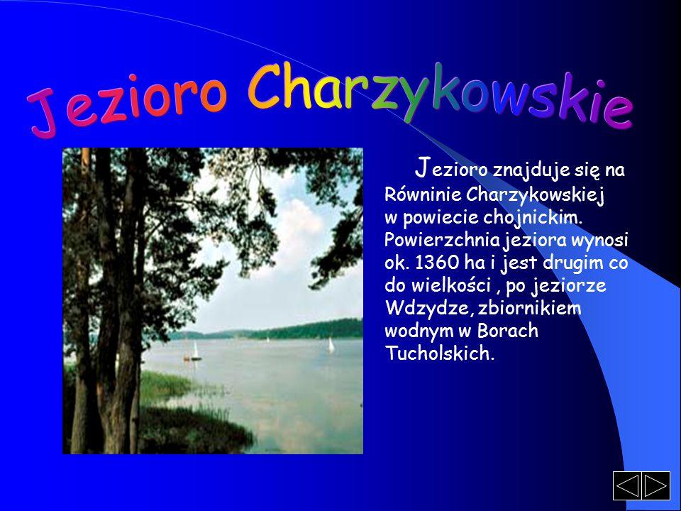 J ezioro znajduje się na Równinie Charzykowskiej w powiecie chojnickim. Powierzchnia jeziora wynosi ok. 1360 ha i jest drugim co do wielkości, po jezi
