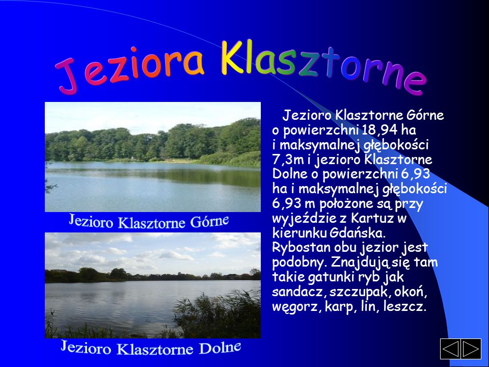 Jezioro Klasztorne Górne o powierzchni 18,94 ha i maksymalnej głębokości 7,3m i jezioro Klasztorne Dolne o powierzchni 6,93 ha i maksymalnej głębokośc