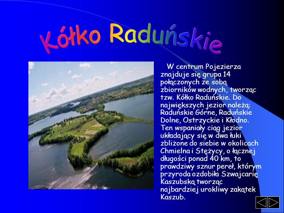 W centrum Pojezierza znajduje się grupa 14 połączonych ze sobą zbiorników wodnych, tworząc tzw. Kółko Raduńskie. Do największych jezior należą: Raduńs