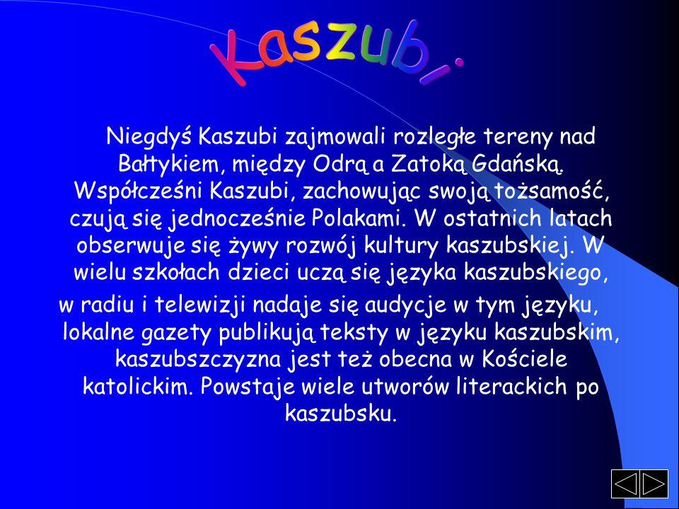 Niegdyś Kaszubi zajmowali rozległe tereny nad Bałtykiem, między Odrą a Zatoką Gdańską. Współcześni Kaszubi, zachowując swoją tożsamość, czują się jedn