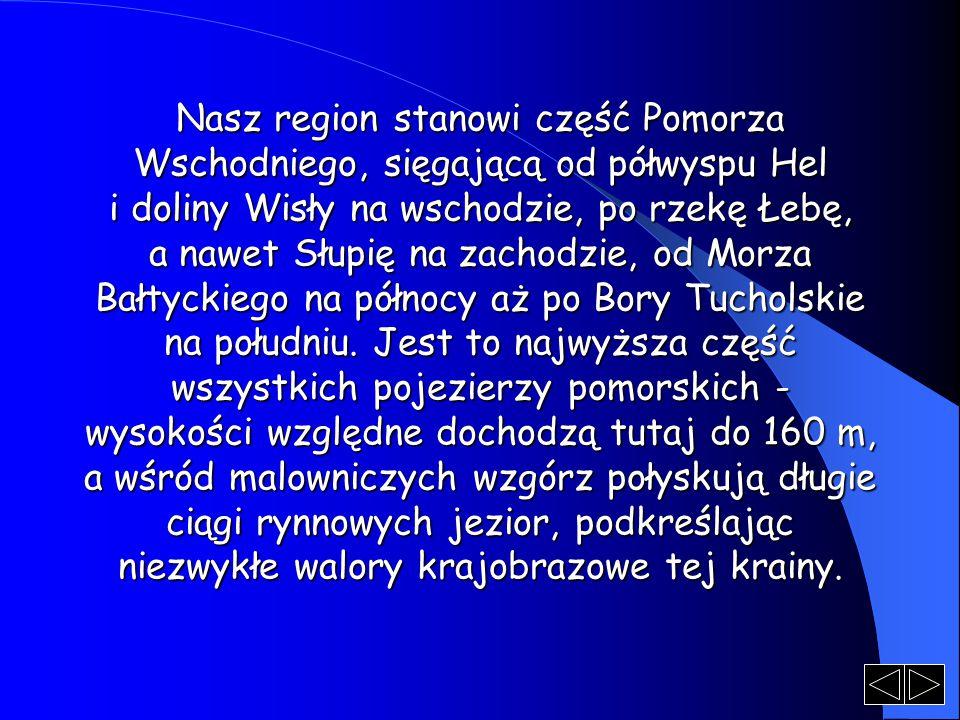 Nasz region stanowi część Pomorza Wschodniego, sięgającą od półwyspu Hel i doliny Wisły na wschodzie, po rzekę Łebę, a nawet Słupię na zachodzie, od M